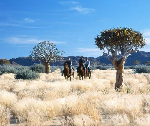 horse riding namibia