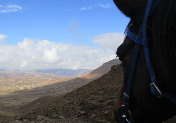 lesotho, Off-Grid Adventures in Lesotho, In The Saddle