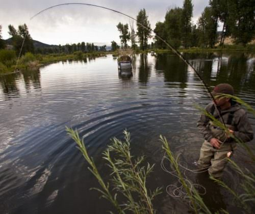 fishing in montana