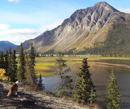Yukon - Rose Lake