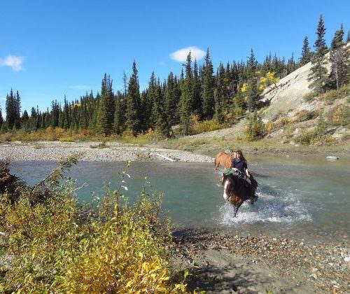 Yukon - Watson River