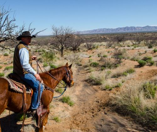 Desert Views at Tombstone Monument Ranch