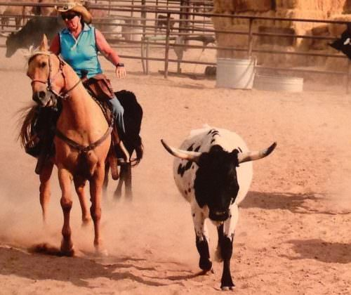 Linda Tallett on her western ranch holiday
