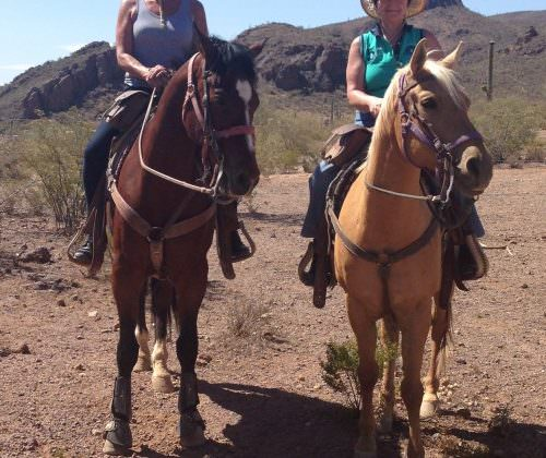 Linda Tallett. Horseback riding in the sunshine of the Arizona desert