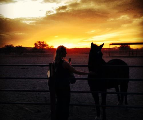 Linda Tallett. Horse and girl silhouette at sunset