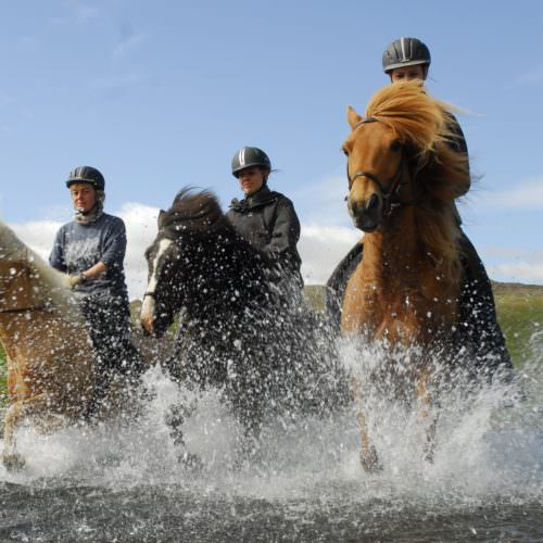 Wilderness expeditions on horseback in Iceland