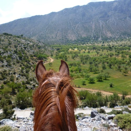 Crete, Lassithi Trek, horse riding in Crete