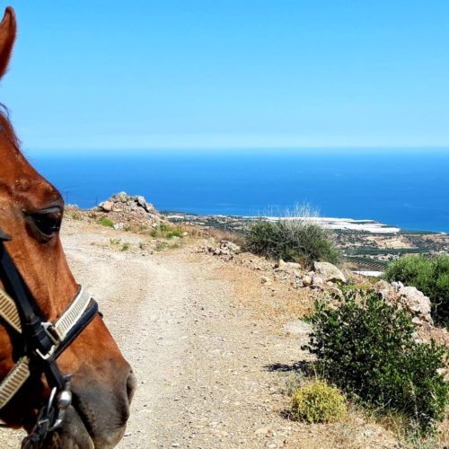 Crete, horse riding in Crete, views