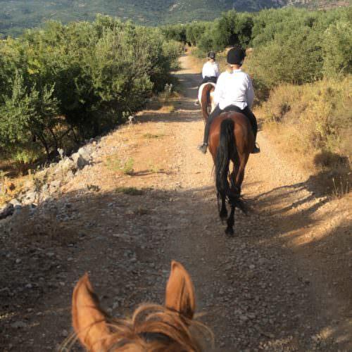 Riding in Crete