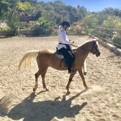 Aphrodite - definitely the prettiest horse