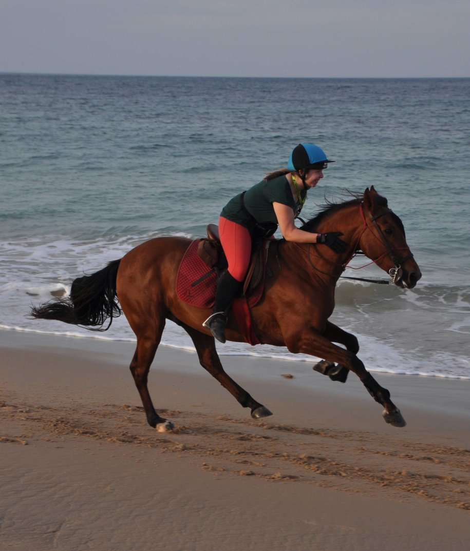 Cantering down the beach on my favourite horse of the week, Hercules.
