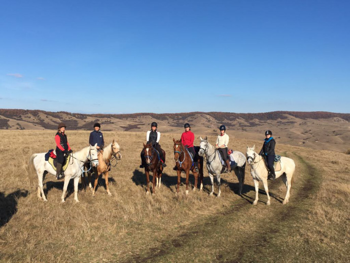 horse riding in romania