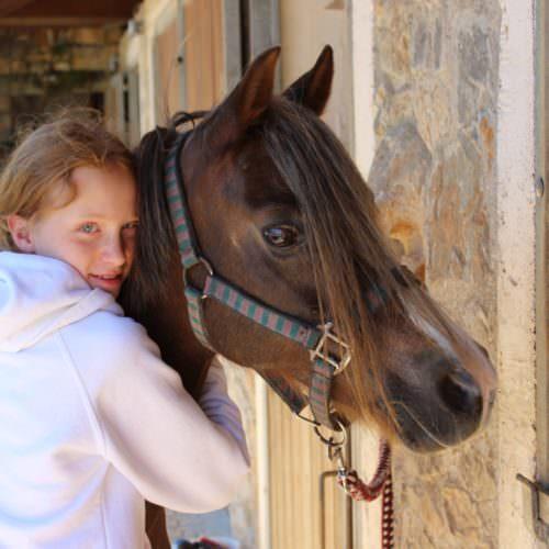 Crete - pony