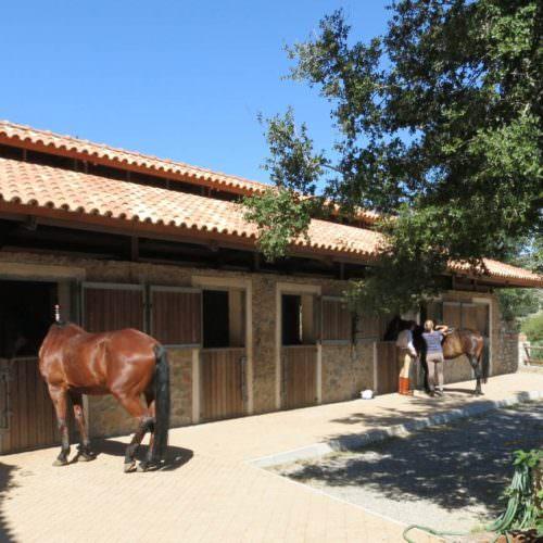 Crete - stables