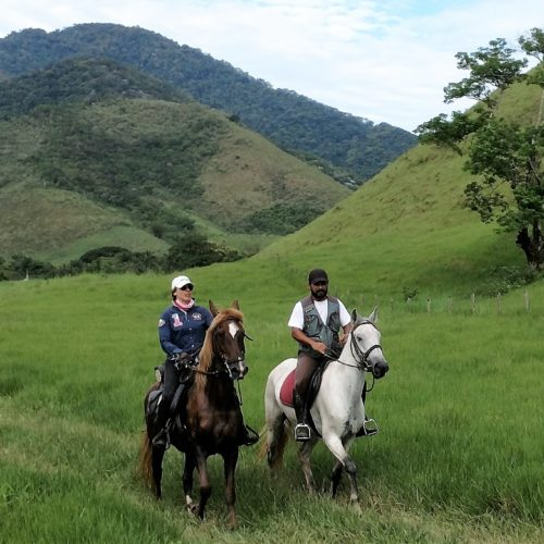 Trail riding holidays in Brazil. Horses in the rainforest.