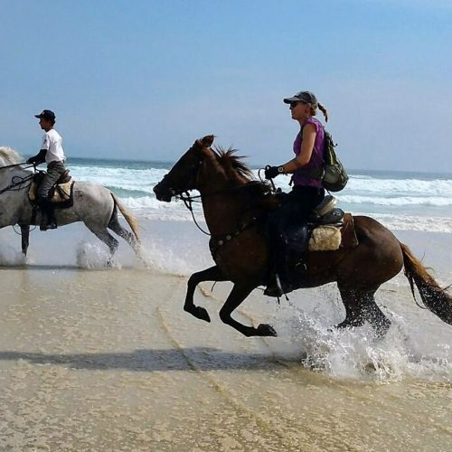 Trail riding holidays in Brazil. Horses on the beach. Beach riding.