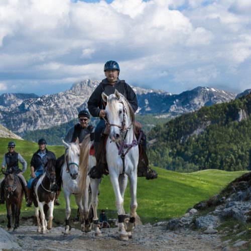 Ride relaxed, happy horses