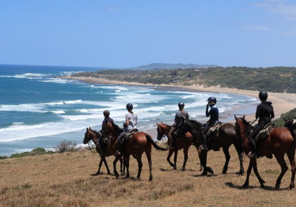 , An unforgettable adventure on the Wild Coast, In The Saddle