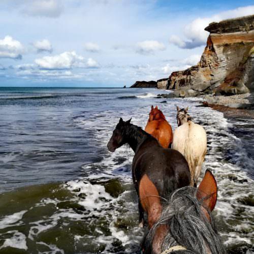 Ride in Argentina