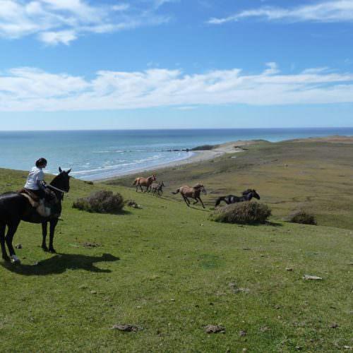 Exploring Peninsula Mitre