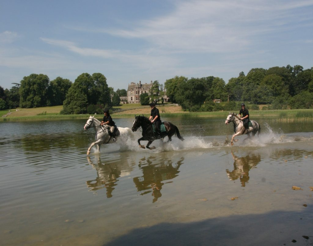 Ireland, castle leslie, glaslough lake, horses