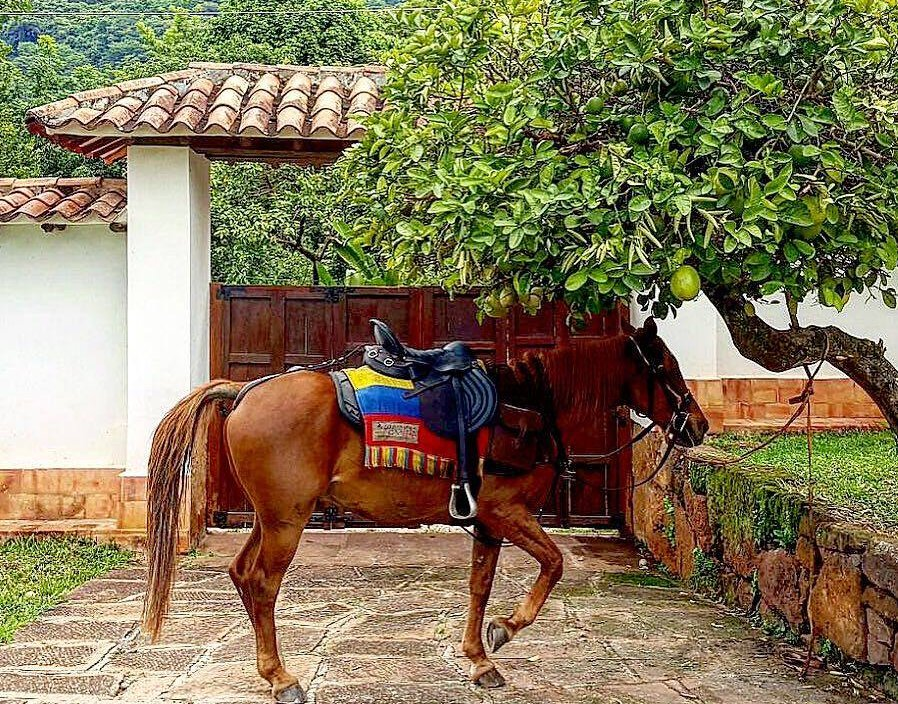 Trail riding in Colombia