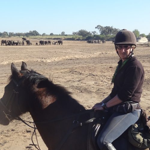 Riding in Botswana, elephants, Tuli trail