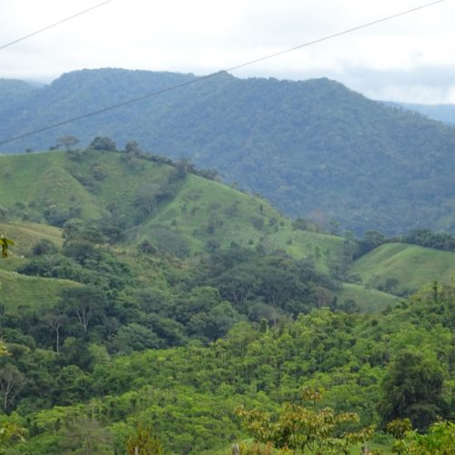 Wilderness ride in Costa Rica. Riding Holidays with In The Saddle. Rainforest views