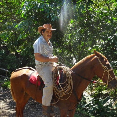 Wilderness ride in Costa Rica. Riding Holidays with In The Saddle. Horses