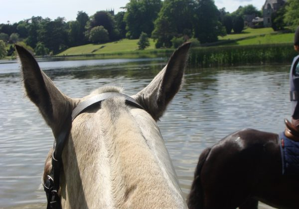 Ireland, castle leslie. lake riding