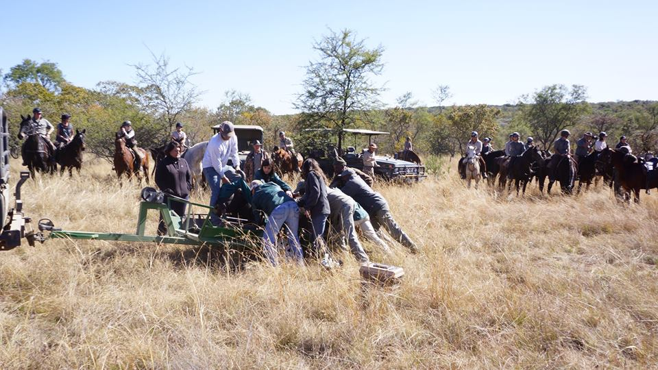 safari conservation, A Rare Opportunity To Assist With Safari Conservation, In The Saddle