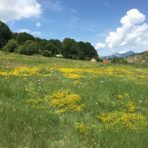 mountain scenery in macedonia