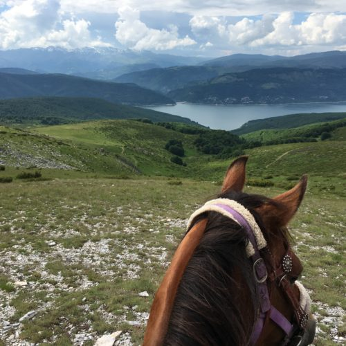 between the ears - horse riding holidays in macedonia