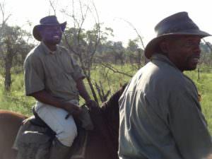 riding safari macatoo, The Magic of the Okavango Delta…., In The Saddle