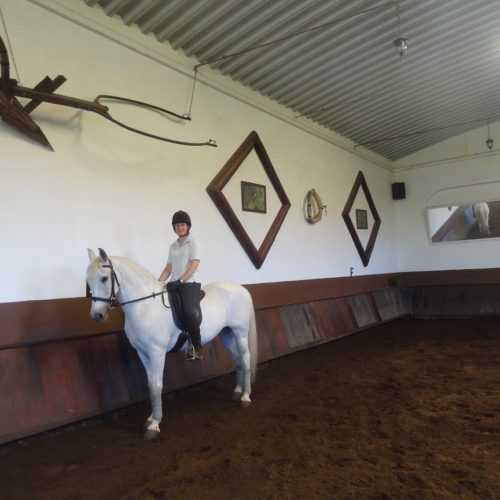 Riding, azores, quinta da terca, lesson, learn to ride