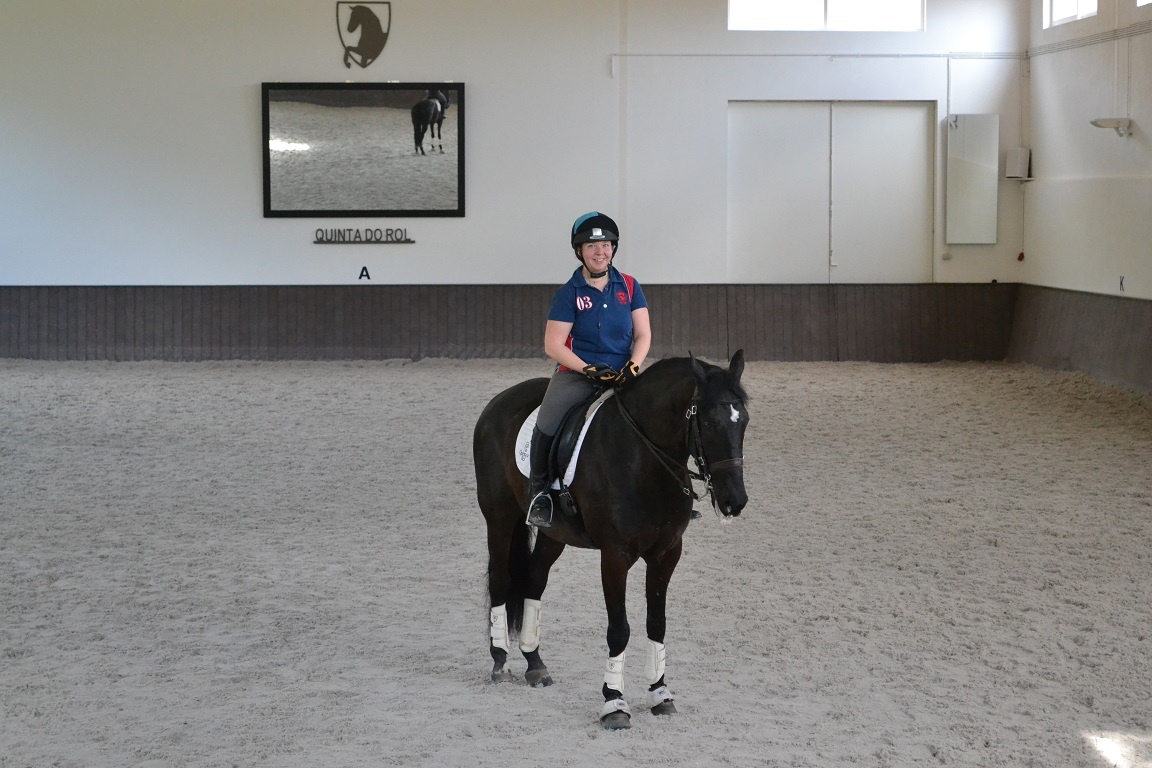 The Adventures Of A Show Jumper In Dressage Paradise Part 1 In