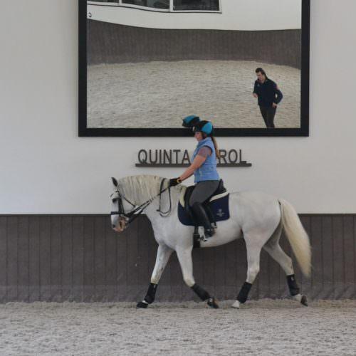 POrtuagl, dressage riding