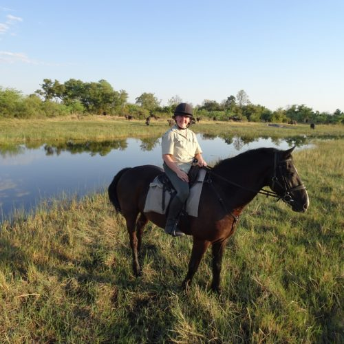 Motswiri Camp, Becky's Okavango Delta Adventure – Part 1 – Motswiri, In The Saddle