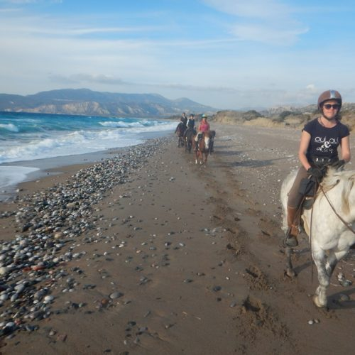 Riding Holidays in Rhodes, Five reasons why you should go to Rhodes, In The Saddle