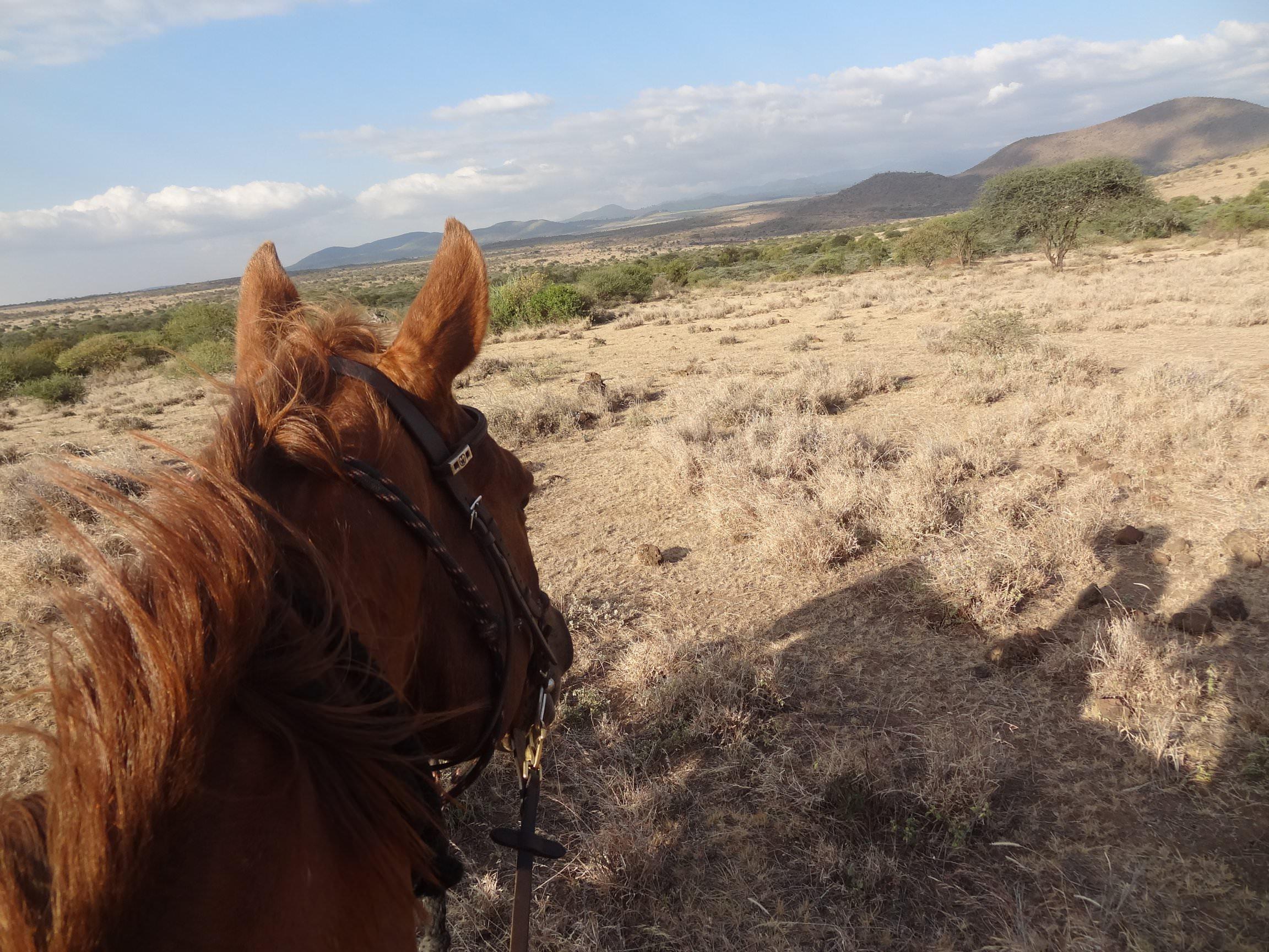 Riding in Tanzania
