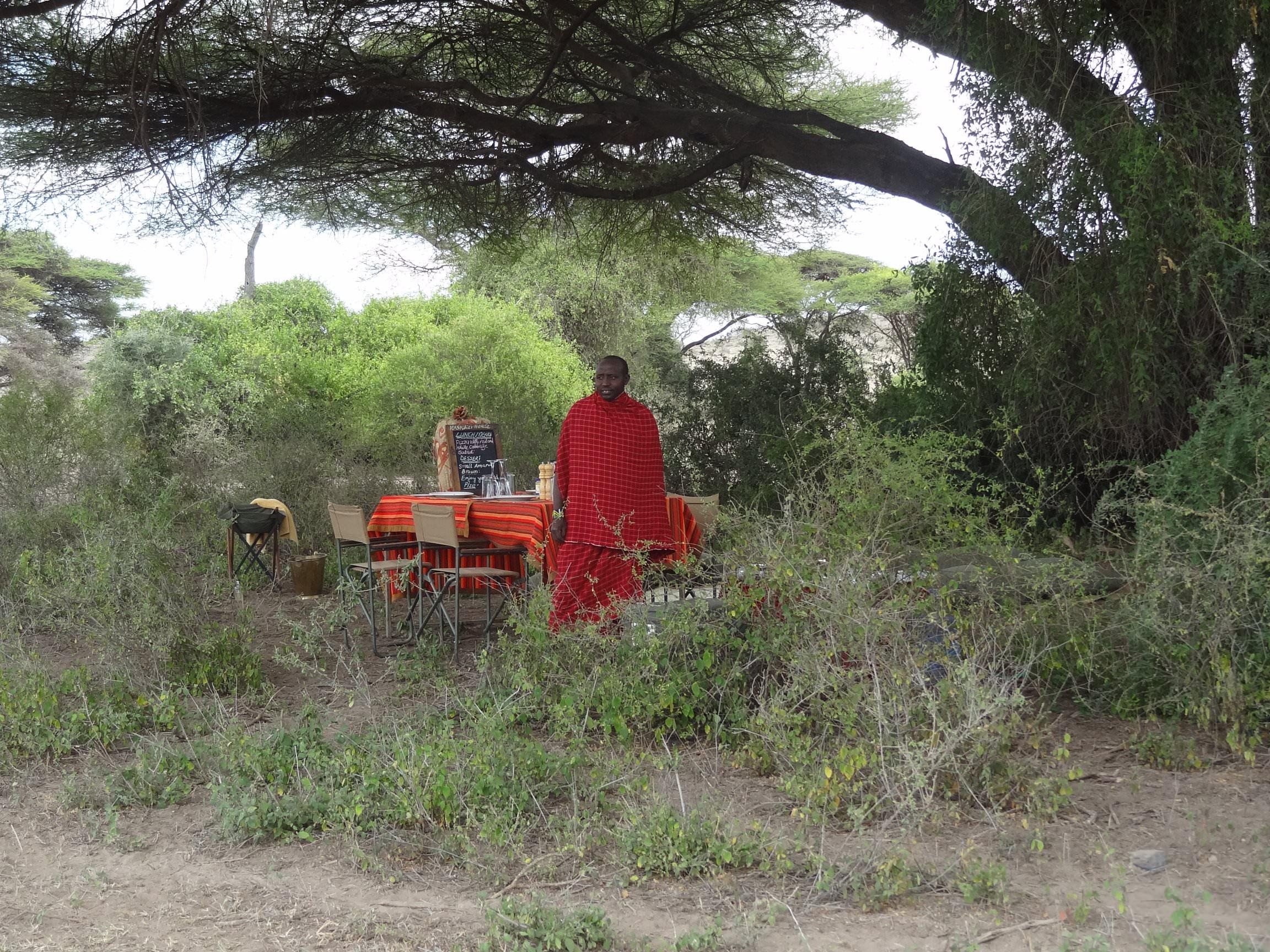 Picnic in the bush