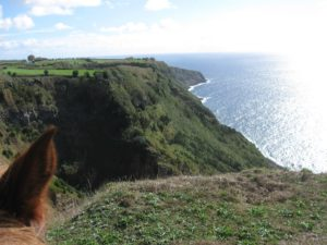 Quinta da Terça, Yet another memorable visit to the Azores, In The Saddle