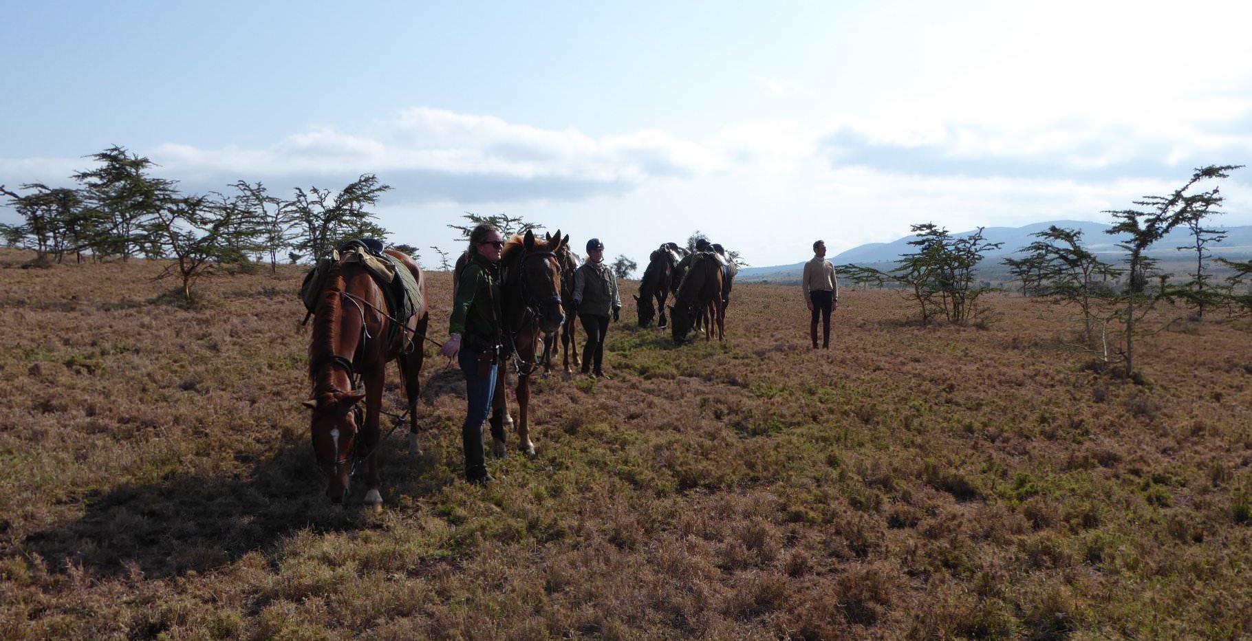mobile riding safari, Travels in Tanzania, In The Saddle
