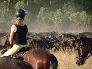 Okavango Mobile Safari, Back to bush basics, In The Saddle