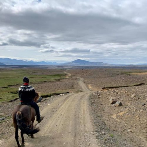 visit iceland, Five reasons I fell in love with Iceland., In The Saddle