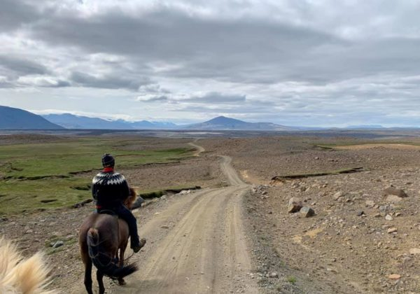 , Five reasons I fell in love with Iceland., In The Saddle