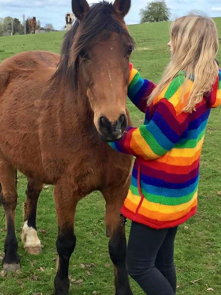 , We won a Monte Velho Holiday, In The Saddle