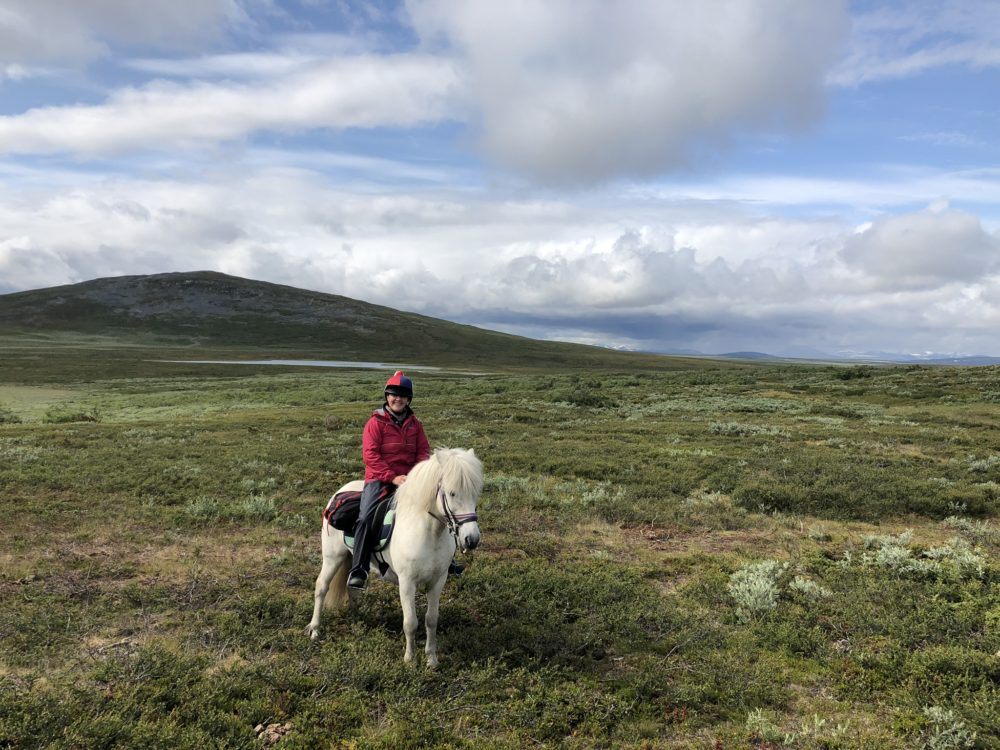 Swedish Lapland, Swedish Lapland: A Survival Guide, In The Saddle