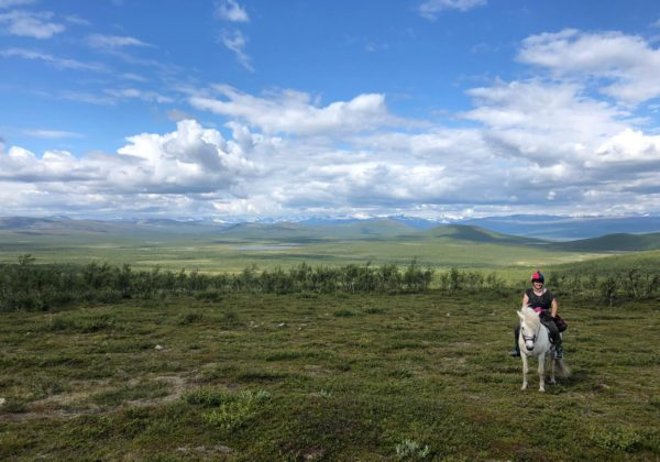 , Swedish Lapland: A Survival Guide, In The Saddle