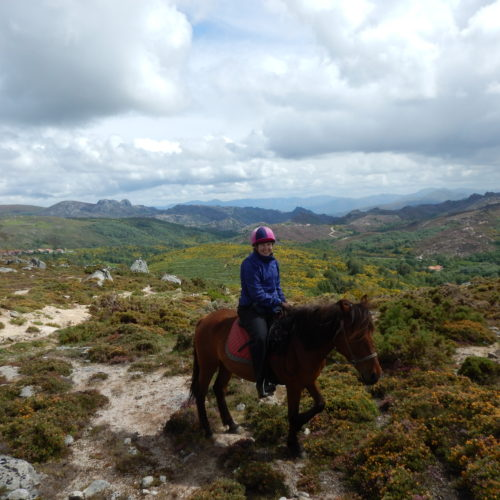 Wild Horses, Wolf prints, plenty of wild horses and the perfect combination of wilderness, relaxation and riding in Portugal, In The Saddle